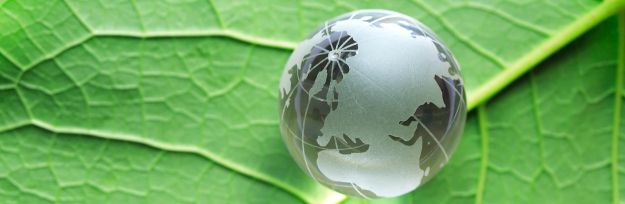 Environment concept. Glass globe lying on green leaf surface